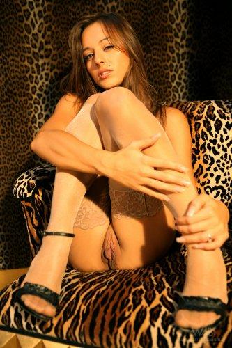 Dominika C. во всех позах на фоне леопардового принта