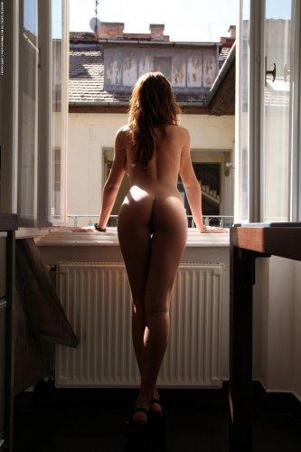 Alexa у окна