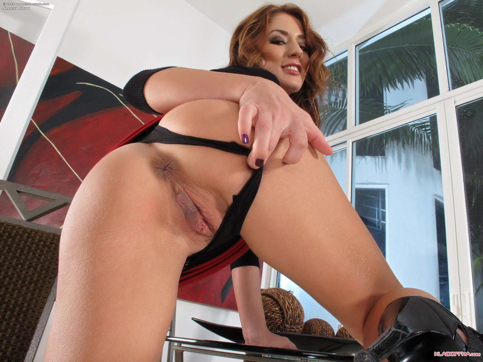 Sheena Shaw секс фото и xxx