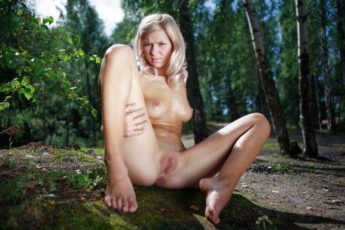 Paloma в берёзовом лесу